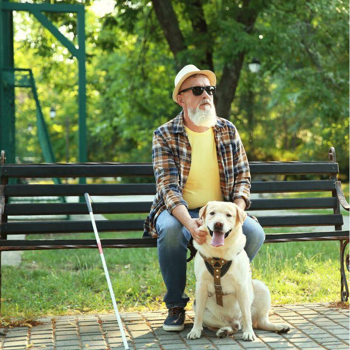 Man met hond op bankje